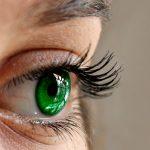 Quegli occhioni verdi 1 racconti - Associazione ViviAdriano