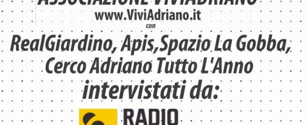 Intervista di Radio Popolare a Viviardiano, RealGiardino, Apis e Spazio la Gobba